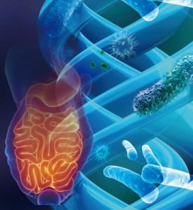 GutMicrobiota